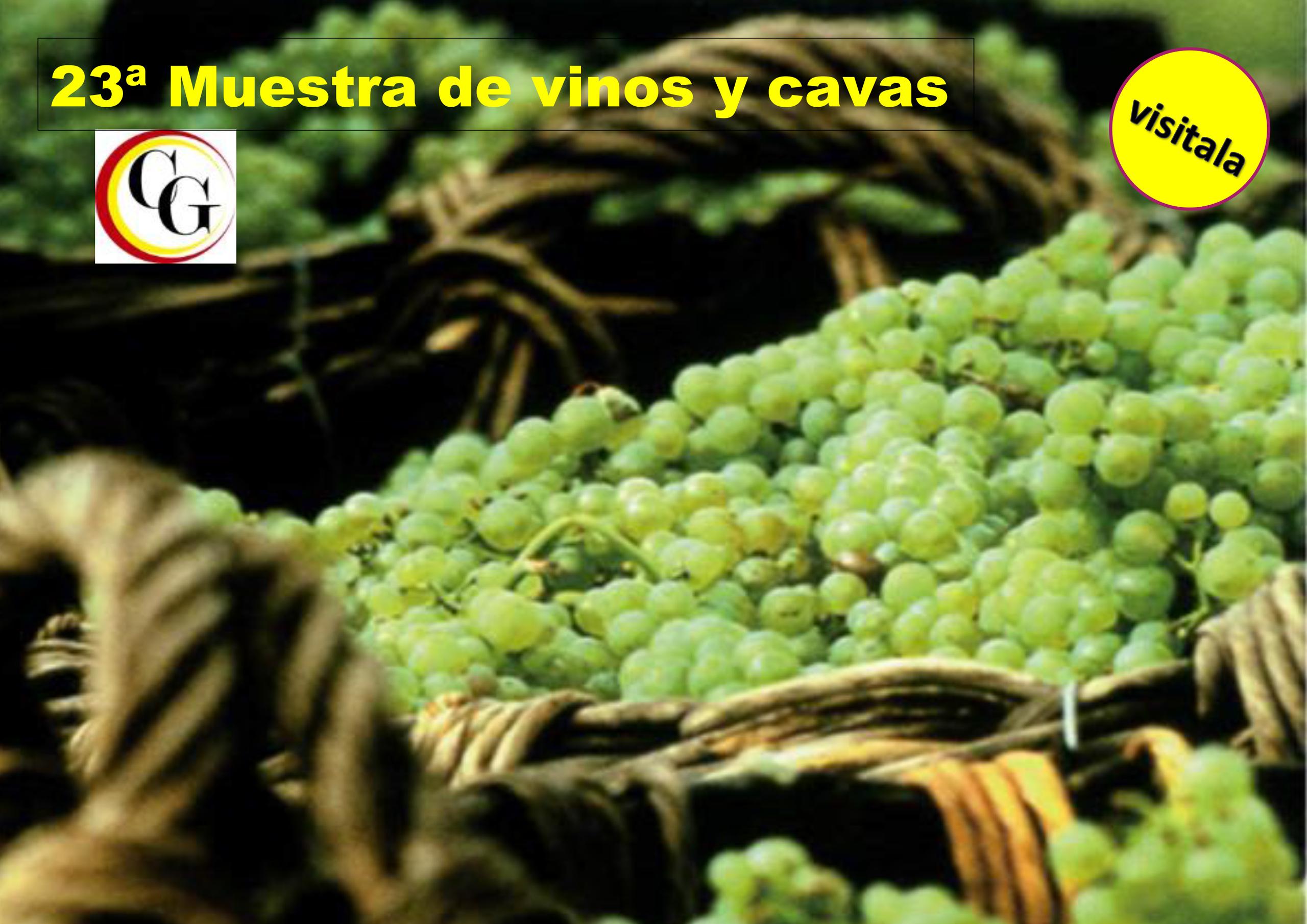 23ºMostra vins i caves